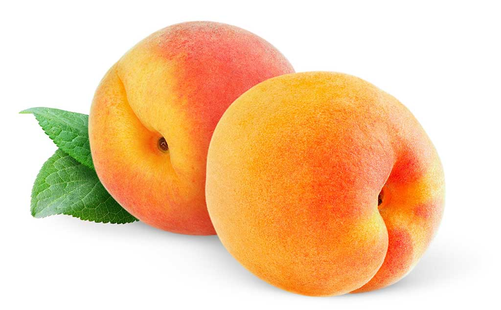 Picture of Live Peach California 4 in Fruit Tree Fit 5 Gallon Pot