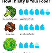 How Thirsty is Your Food?