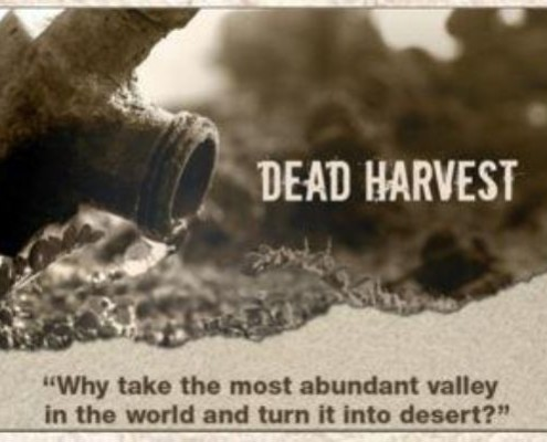 dead harvest short film