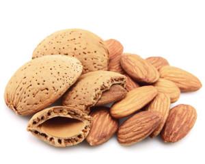 Almond-half-shell