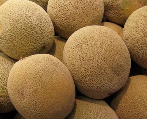Cantaloupe Bunch
