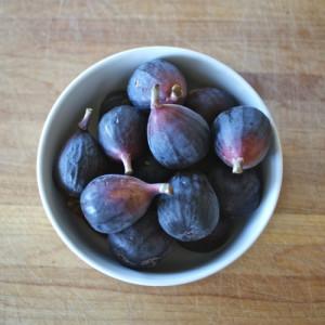 Molly Watson Figs