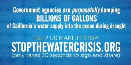 Stopthewatercrisis.org