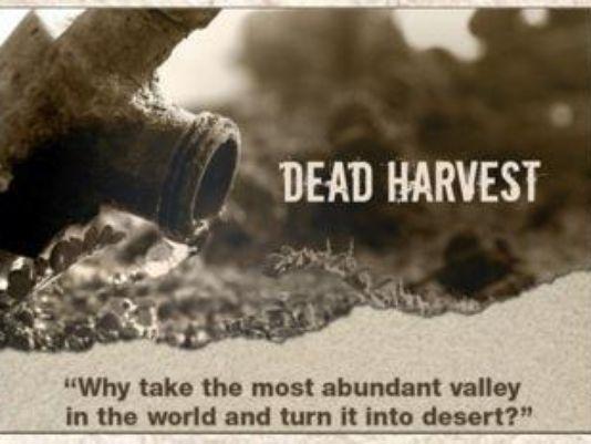 dead harvest short film